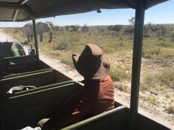 Namibia Safari Pictures 572