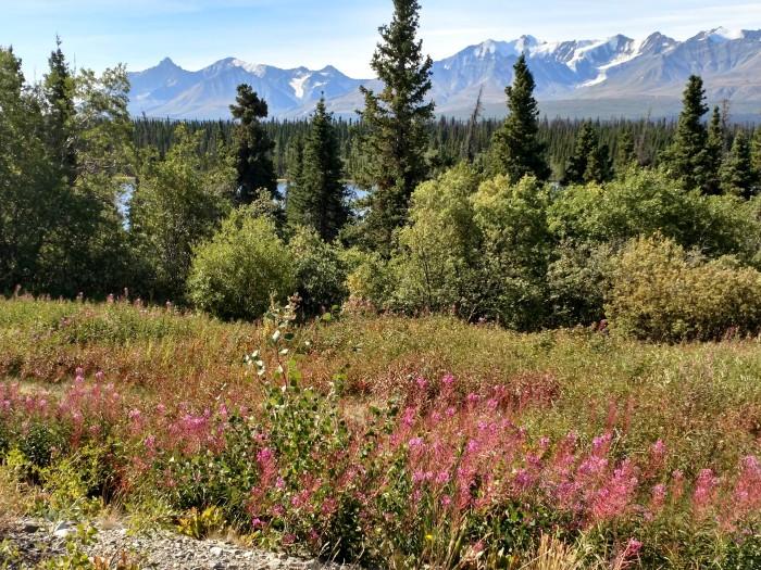 British Columbia, The Yukon and Alaska Trip (Recap of our BIGMOVE).